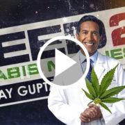 portada documental weed 2 con doctor