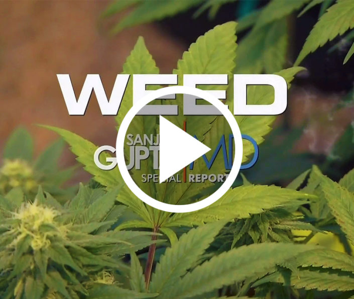 portada documental weed sanjay gupta