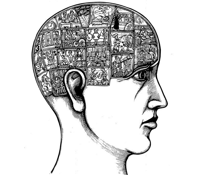 dibujo de cabeza con cerebro en celdas
